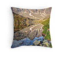 Alpine Stillness Throw Pillow