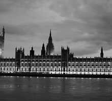 Houses of Parliament by Michelle Welch
