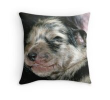 New Born Poppy Throw Pillow
