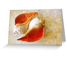Grungy Shells Greeting Card