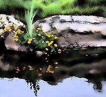 Marsh Marigolds, by Richard Ion