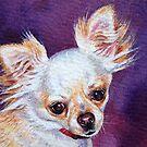 """Chihuahua"" by Elena Kolotusha"