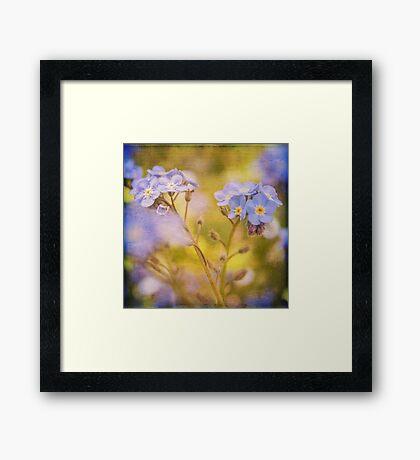 Blue Floral Textured  Framed Print