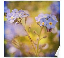 Blue Floral Textured  Poster