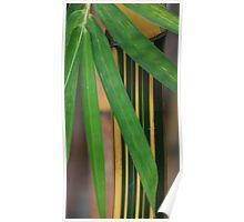 Bamboo Leaf On Stem Poster