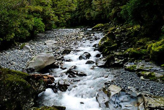 Piero Kwong ? Portfolio ? The Chasm - Milford Sound - New Zealand