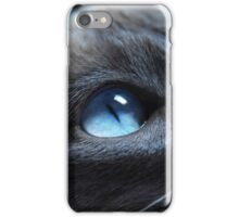 Cat by beautiful blue eyes iPhone Case/Skin