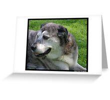Neighborhood Dog Greeting Card