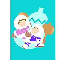 Super Smash Bros Ice Climbers  Photographic Print