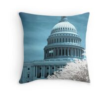 Capital Building Throw Pillow
