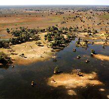 Bird's eye view of the Okavango Delta, Botswana by Sharon Bishop