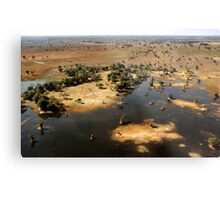Bird's eye view of the Okavango Delta, Botswana Metal Print