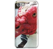 A Handsome Chap iPhone Case/Skin