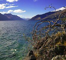 Lake Taupo by chwells