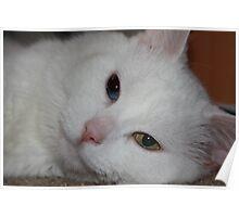 Pretty Eyes Poster