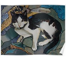 Bills the cat Poster