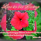 Live in the Spring by Greeting Cards by Tracy DeVore