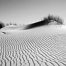 Coorong Dunes by Leeo