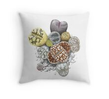 Lithops Cluster (No Labels) Throw Pillow