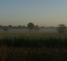 Fog Lifting Over Webb Lake by Virginia N. Fred