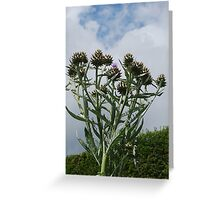 Thistle-me-Timbers Greeting Card
