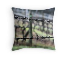 Behind Barbs Throw Pillow