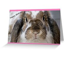 Girly Rabbit Happy Birthday  Greeting Card