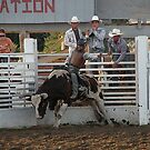 Rodeo moment by Christina Stanley