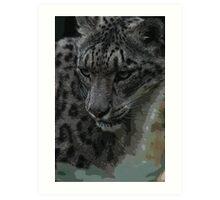Snow Leapard Art Print