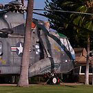 Helicopter in the Yard by Diana Forgione