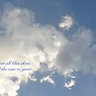 LIFE IS NOT ALL BLUE SKIES by Thomas Barker-Detwiler