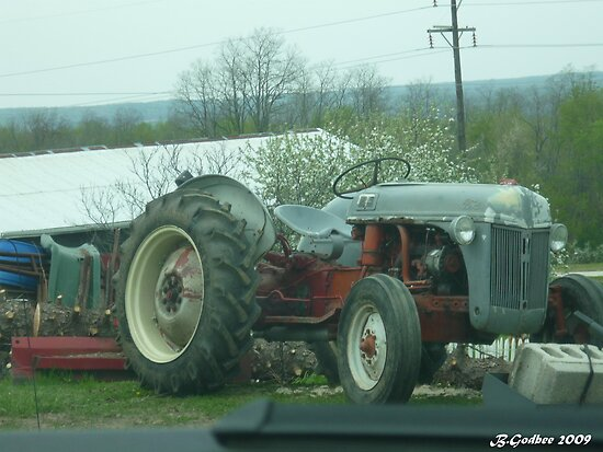Old Bonez-1948 Ford Tractor by Bea Godbee