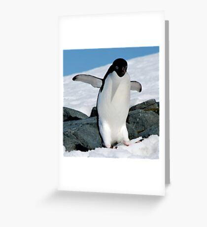 so you think you can dance... Greeting Card