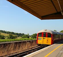 Brading Station by Jonathan Cox