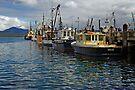 Eden Wharf by Darren Stones