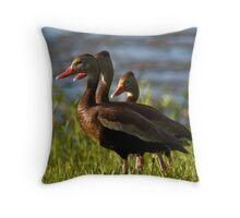 Lake de Soto Ducks Throw Pillow
