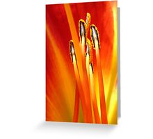 Passion ©  Greeting Card