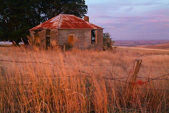 Sunset Glow, Barrabool Hills by Joe Mortelliti