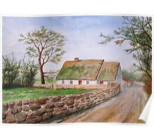Traditional Irish Thatched Cottage Poster