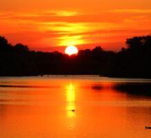 Swithland Reservoir Sunset Sticker