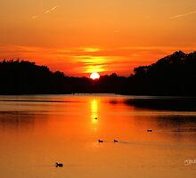 Swithland Reservoir Sunset by Jonathan Cox