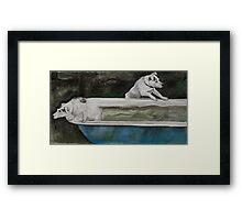 Dog bath I Framed Print