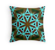 When you wish upon  a star makes no difference who you are Throw Pillow