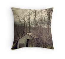Forgotten Shed Throw Pillow