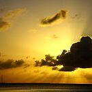 Golden Rays by HeatherEllis