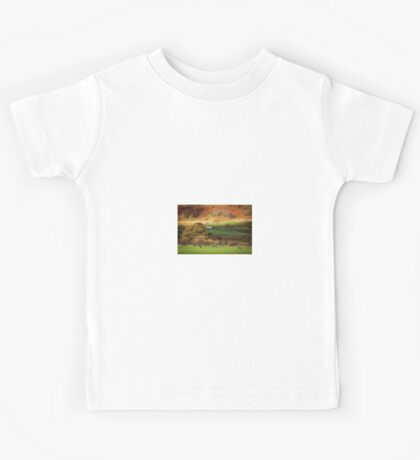 Barn and Dry Stone Wall in Autumn. Kids Tee