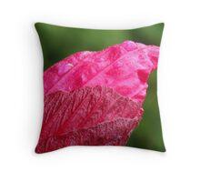Rose Mallow Bud ( hiciscus militaris) Throw Pillow