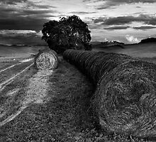 Tuscany in Autumn by Marco Vegni