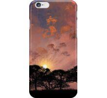 3873 iPhone Case/Skin