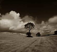 Treescape on a cloudy day by ragman